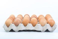 Egg dans une caisse d'oeufs sur le fond blanc Photographie stock
