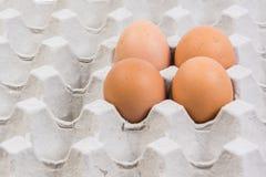 Egg dans une caisse d'oeufs sur le fond blanc Photos stock