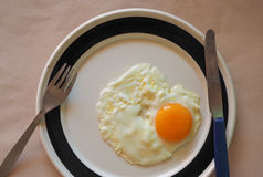 Egg in dish Stock Images