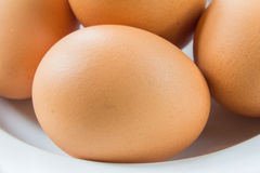 egg on dish Royalty Free Stock Images