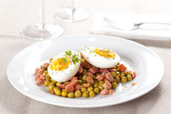 Egg dish with ham and peas Stock Photography