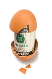 Egg with dollar Royalty Free Stock Photo