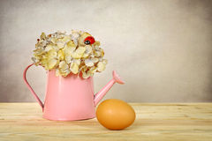 Egg and dry hydrangea flower in bucket Royalty Free Stock Photo