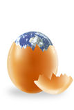 Egg and the Earth Stock Image