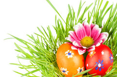 Egg easter in a grass Royalty Free Stock Photo