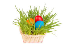 Egg easter in a grass Isolated on white Stock Photos