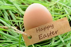 Egg with Easter greetings on grass stock image