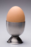 Egg and egg cup Royalty Free Stock Photos