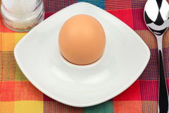 Egg in egg cup Stock Image