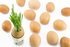 The egg in egg-cup Royalty Free Stock Photo