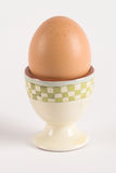 Egg in egg-cup Stock Image