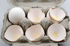 Egg and egg shells in container Stock Photos