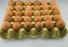 Egg and egg tray Stock Photography