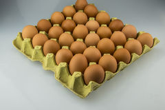 Egg and egg tray. Egg is very nutritious, is the use of support Royalty Free Stock Images