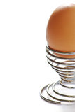 Egg in eggcup Stock Image