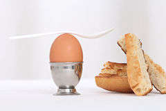 Egg in an eggcup Stock Image