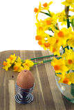 Egg,eggcup and daffodils. Speckled free range eggs with spring daffodils Stock Image
