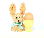 Egg in eggcup and easter bunny. Isolated on white background stock photo