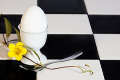 Egg in Eggcup with Yellow Flower Stock Photos