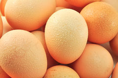 Egg. S have high protein and healthful Stock Images