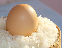 Egg. S on  sticky rice and bamboo Royalty Free Stock Photo