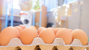 Egg. S in the  tray Royalty Free Stock Images