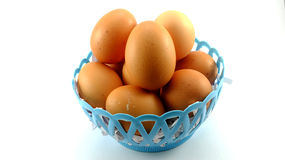 Egg eggs white background Royalty Free Stock Photos