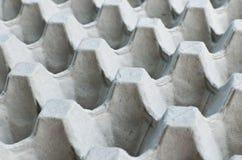Egg el envase Foto de archivo libre de regalías