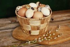 egg el primer de madera pascua del fondo de la tabla de la rama del pottle de la comida Imagen de archivo libre de regalías