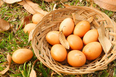 Egg ester in the basket food Royalty Free Stock Photography
