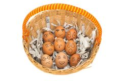 Egg face in basket. newspapers. orphaned. dumped. Egg face in basket. orphaned. dumped Stock Photography