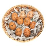 Egg face in basket. newspapers. orphaned. dumped. Egg face in basket. orphaned. dumped Stock Images