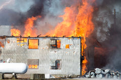 Egg farm fire. Stock Images