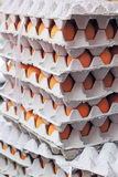 Egg farms in the panel - stacked. Royalty Free Stock Photography