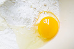 Egg in the Flour Stock Photography