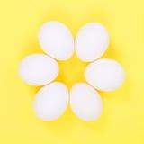 Egg flower Stock Images