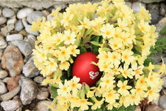Egg in flowers Royalty Free Stock Photo