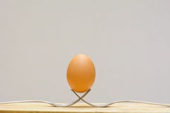 Egg on a fork Stock Photo