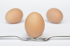 Egg on the forks and white background Stock Photography