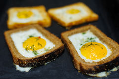 Egg. Four scrambled eggs cooked in rye bread Royalty Free Stock Photo