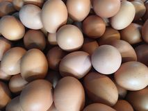 Egg at Freash Market Royalty Free Stock Image
