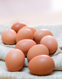Egg. Fresh eggs on the sack Stock Photography