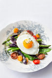 Egg on fresh healthy vegetables light meal option Royalty Free Stock Image