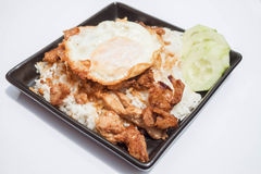 Egg fried and fried pork garlic with soy sauce Stock Image