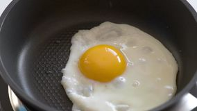 Egg fried on pan. Egg fried on hot Pan. Cooking Chicken egg on fry pan. Top view close-up stock footage