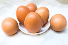 Egg in front. Of focus Royalty Free Stock Photography