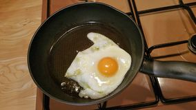 Egg in frying pan. Fresh farm egg with golden yolk being cooked in frying pan Stock Images