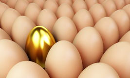 Egg gold. Food objects raw Stock Images