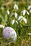 Egg in the grass Royalty Free Stock Images