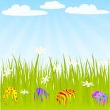 Egg_grass Royalty Free Stock Photos